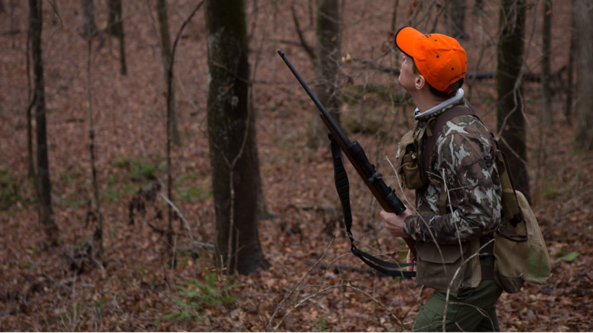 Caliber Battle: .22 LR vs. .17 HMR