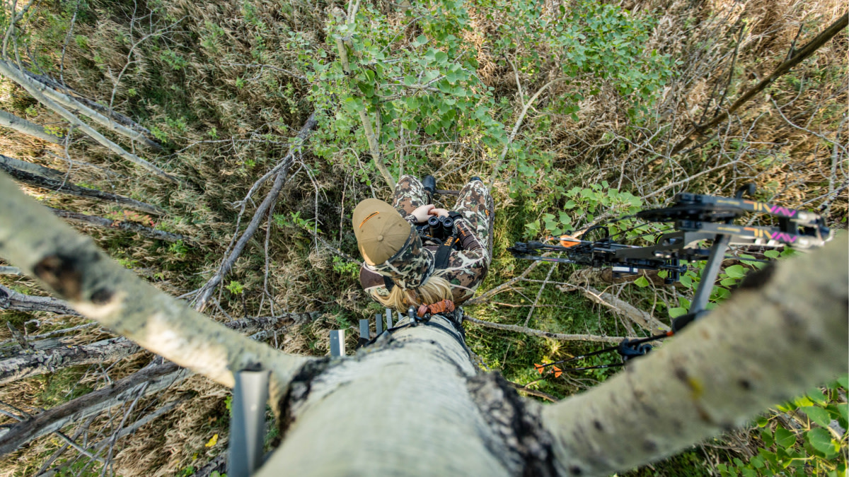 How to Kill a Whitetail Buck in September
