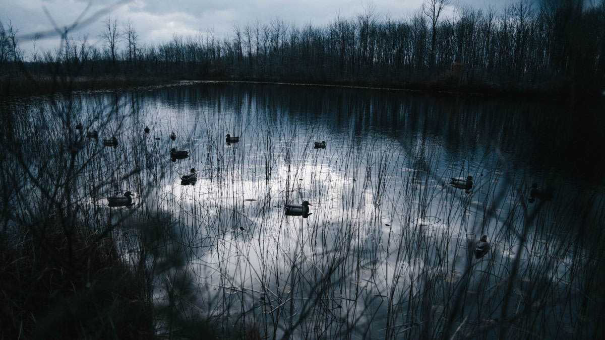 3 Never-Fail Duck Decoy Setups for Small Water