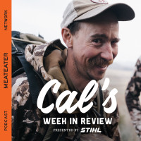 Cal's Week In Review