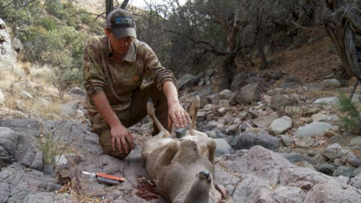 Field Tips for Gutting a Big Game Animal