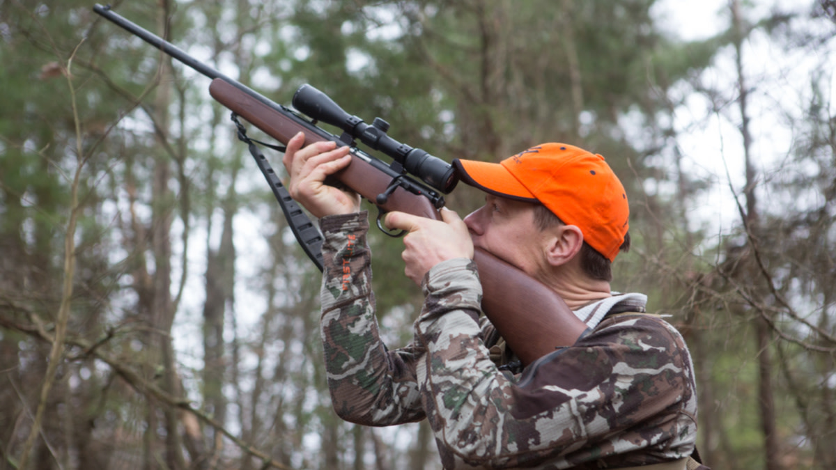 7 Hot Tips for Hunting Squirrels