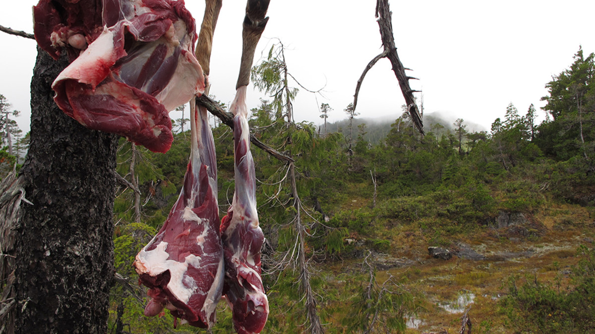 Tips for Handling Wild Game Meat in the Field