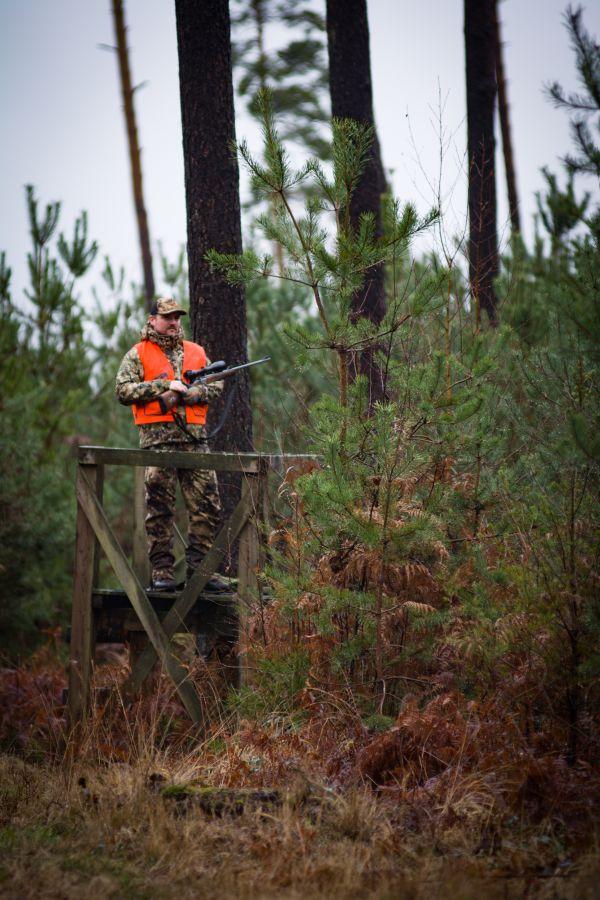 Driven hunting in Belgium - Stefaan Rothier - Driven hunt posts