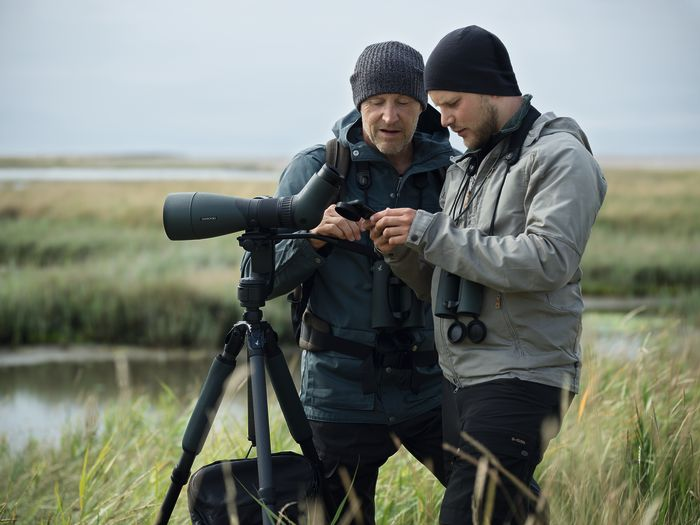 With digiscoping equipment, you can make photos through your spotting scope with your smartphone. Two dedicated birders are looking at their discovery.