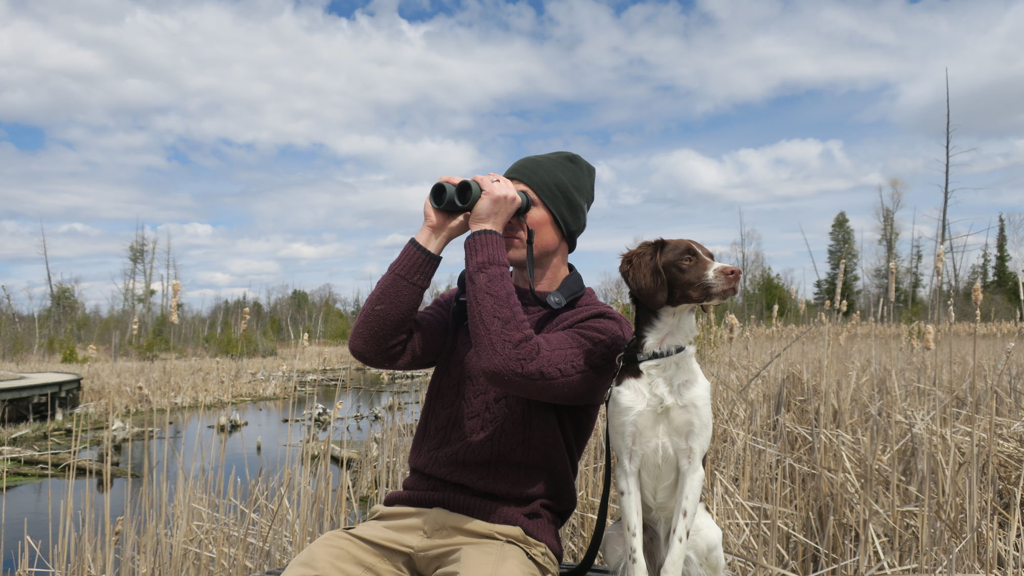 NL Pure James Lees Wetland Birding with dog
