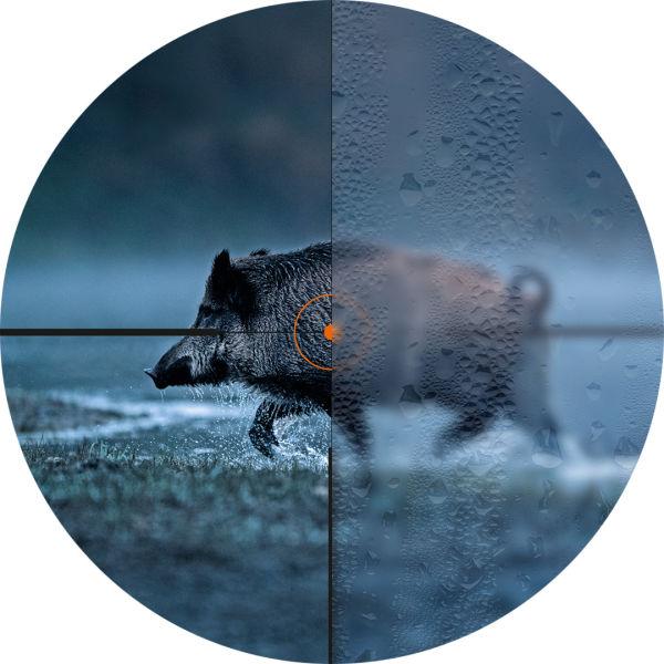 K21 Wildschwein DSC5205 Absehen Vergleich RGB