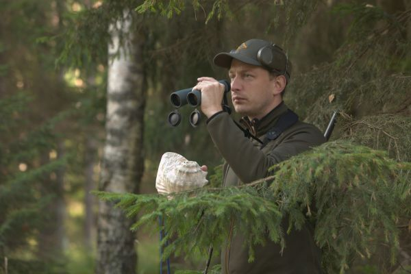 Hunting red deer in Poland - stalking with shell