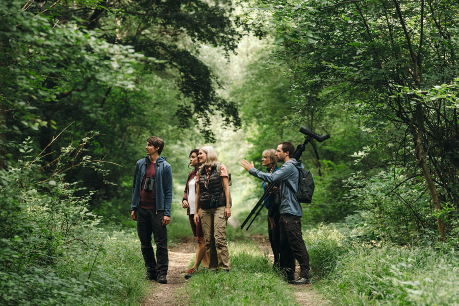 group - birding - bird guide - forest - pointing - looking left - Leander Khil - Martina Liener - Eider - K19 dG andreschoenherr DSC1186 CMYK(ID1362720)