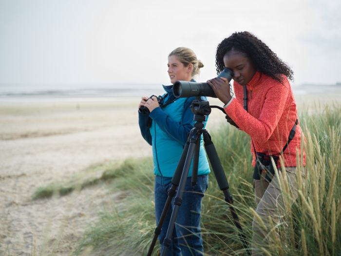 Why everyone can become a great birder - SWAROVSKI OPTIK CCT, CTH, ATX 65, CL Companion Birders, Titchwell