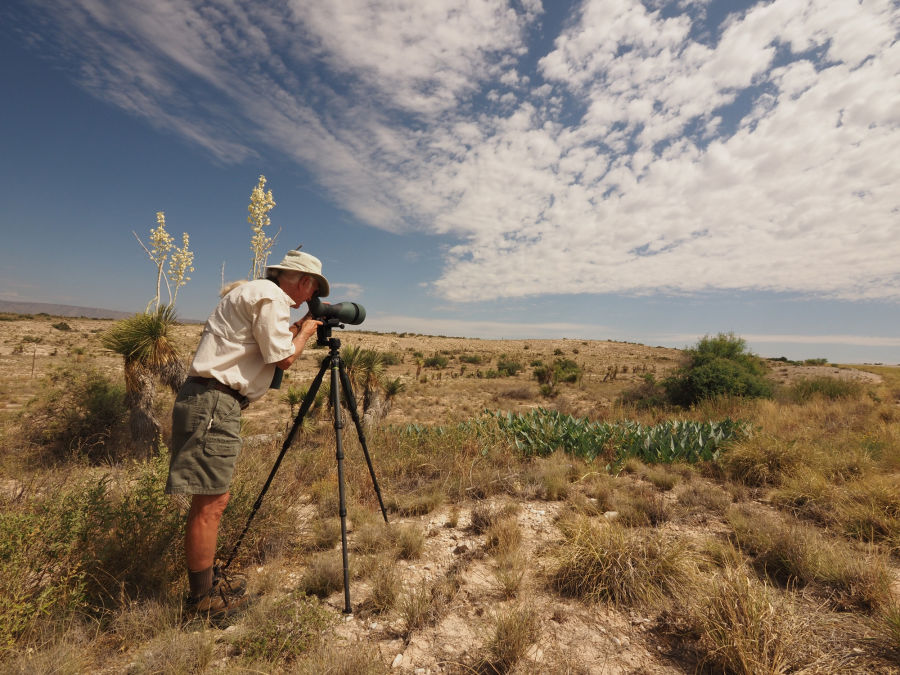 The 115-mm objective module in Texas 2/3 – birding at Guadalupe Mountains National Park B/ - Scanning the hills at the foot of El Capitan