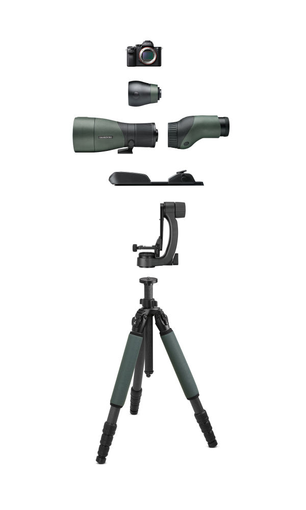 The combination of PCT professional carbon tripod and PTH professional tripod head is designed to withstand the elements.