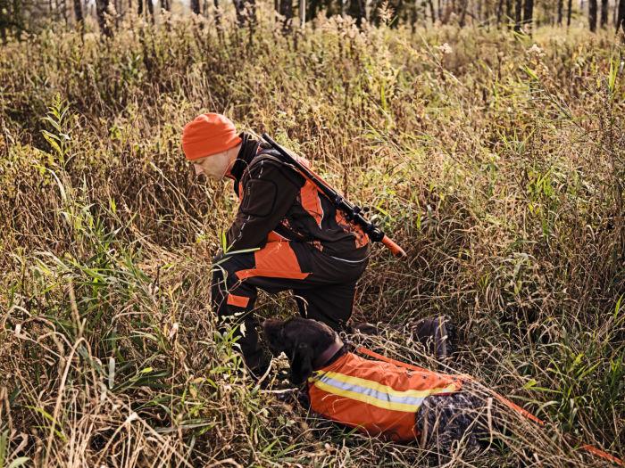 Fascinated by driven hunting H/ - Max Busenius K17_Z8i_0,75-6x20_Drueckjagd_B0041047 ID 1087335