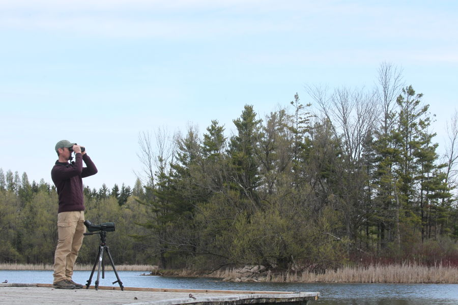 NL Pure James Lees Lake Birding