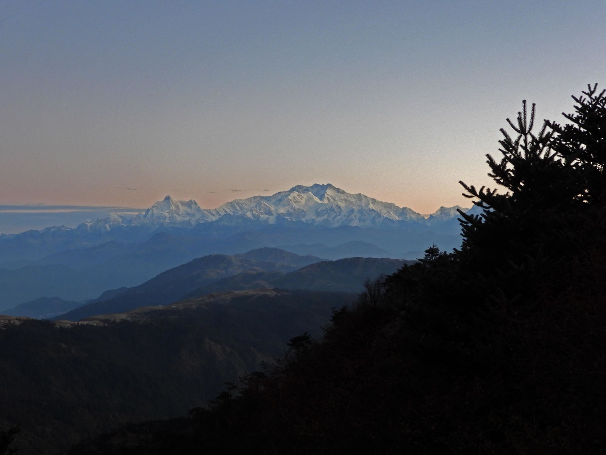 Kanchendzonga sunrise from Singalila on our Panda search