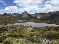 El Cajas, Anden