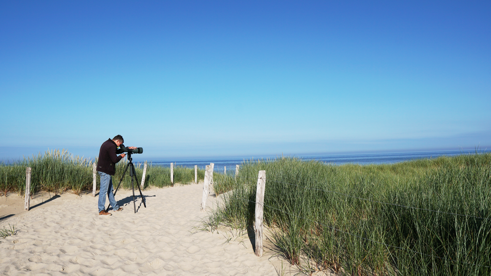 A joint adventure: Mark and Nils seawatching with the 115-mm objective module B/
