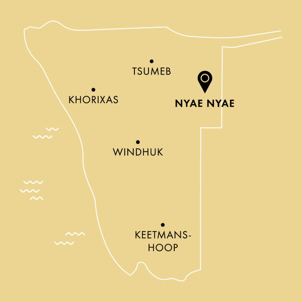 Namibia - Sustainable hunting in the Nyae Nyae Conservancy H/ - Quick facts about the Nyae Nyae Conservancy