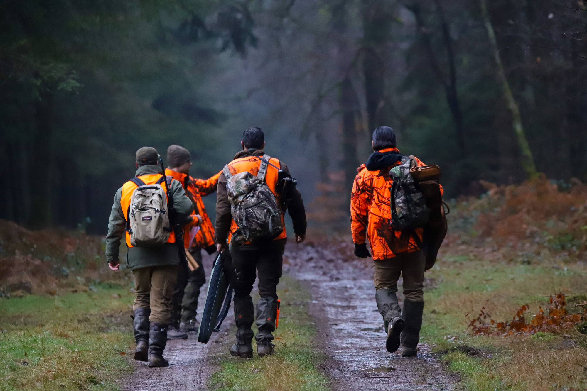 Join  us on a driven hunt in Belgium - Dimitri Hullebroek and other hunters after hunting wild boar