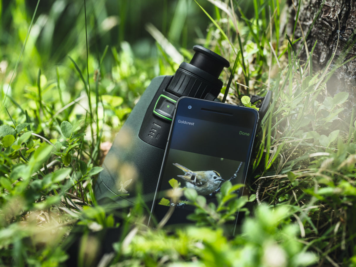 dG on ground within grass with bird picture on smarthone screen