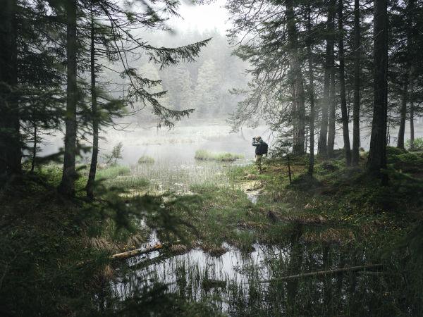 NL Pure Rucksack landscape ID 1460988