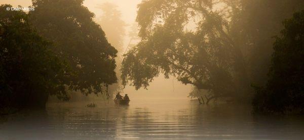 Borneo photography tour ORXY