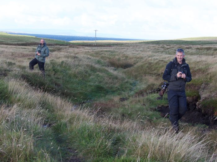 EL & NL Pure Autumn Birding in Scotland, Dan Brown