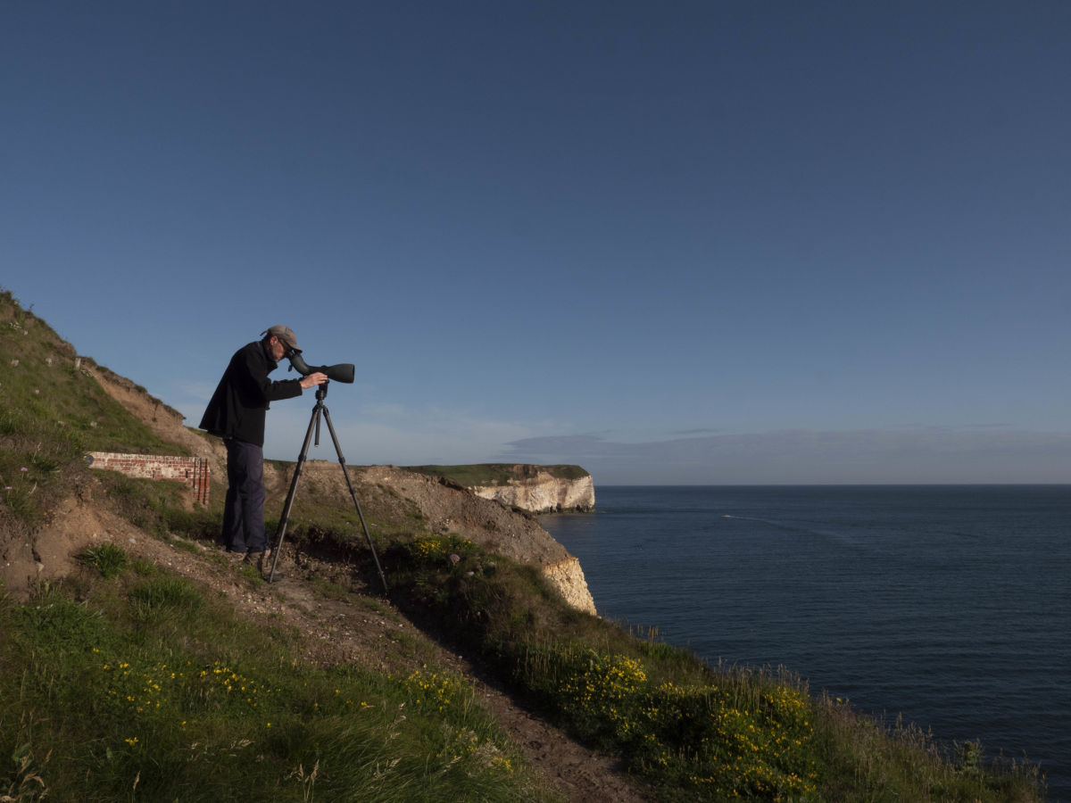A Black-browed Albatross at RSPB Bempton Cliffs: Craig Thomas testing the 115 objective module.