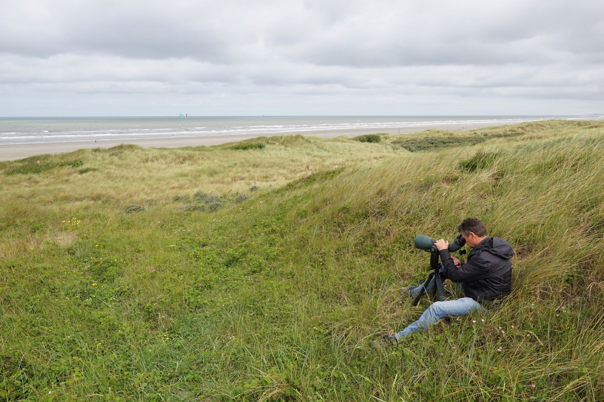 A joint adventure: Mark and Nils seawatching with the SWAROVSKI OPTIK 115-mm objective module - Nils van Duivendijk went birding on the Dutch coastline with the BTX 115-mm objective module.