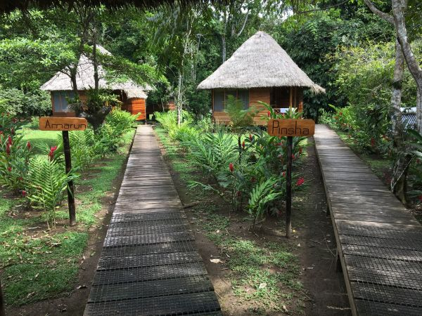 Cabins at Sani Lodge Amazon