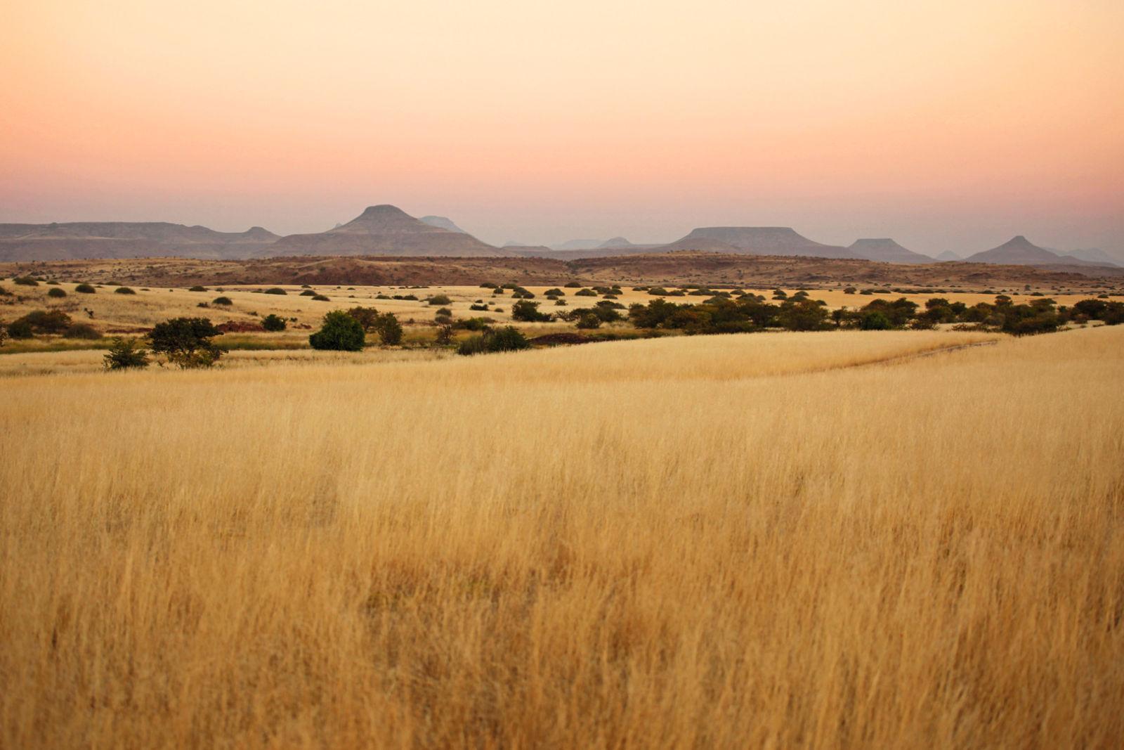 Namibia - Sustainable hunting in the Nyae Nyae Conservancy - SWAROVSKI OPTIK CLOSER Magazin, Hunting, Namibian Savannah