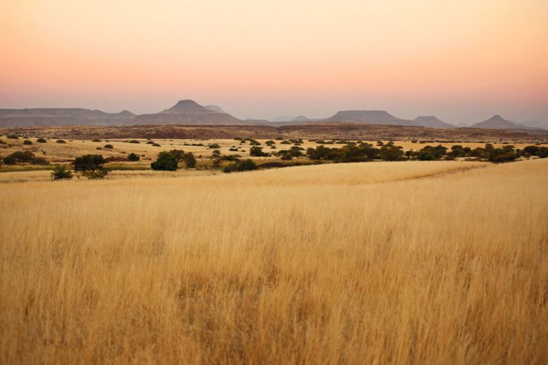 Namibia - Sustainable hunting in the Nyae Nyae Conservancy H/ - CLOSER Magazin, Hunting ID:1524254