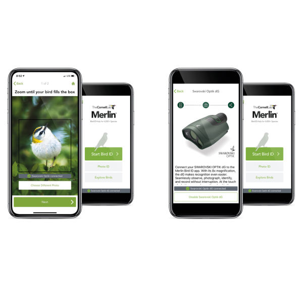Making the most of your SWAROVSKI OPTIK dG and Merlin Bird App