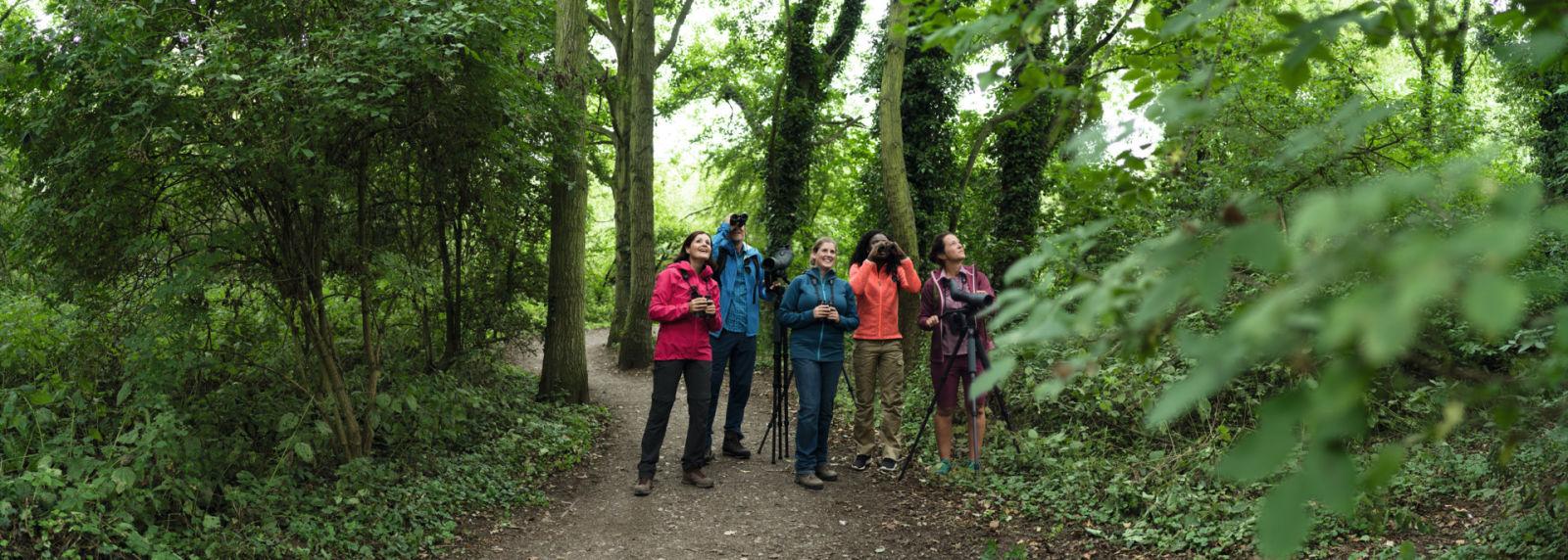 Why everyone can become a great birder - SWAROVSKI OPTIK Tripods BTX, ATX, EL, CL, Birders, Titchwell