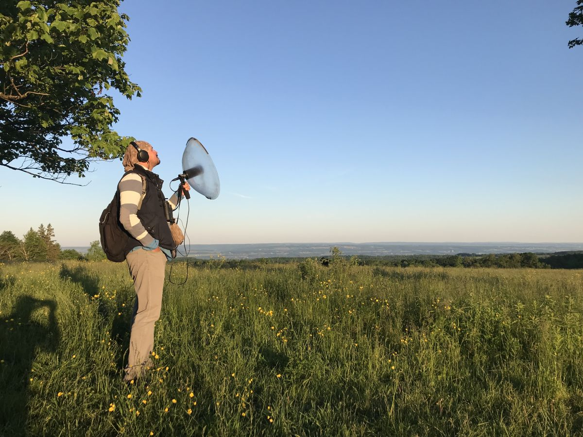 Bird songs: music to your ears B/ - © Andrew Spencer / Cornell Lab of Ornithology