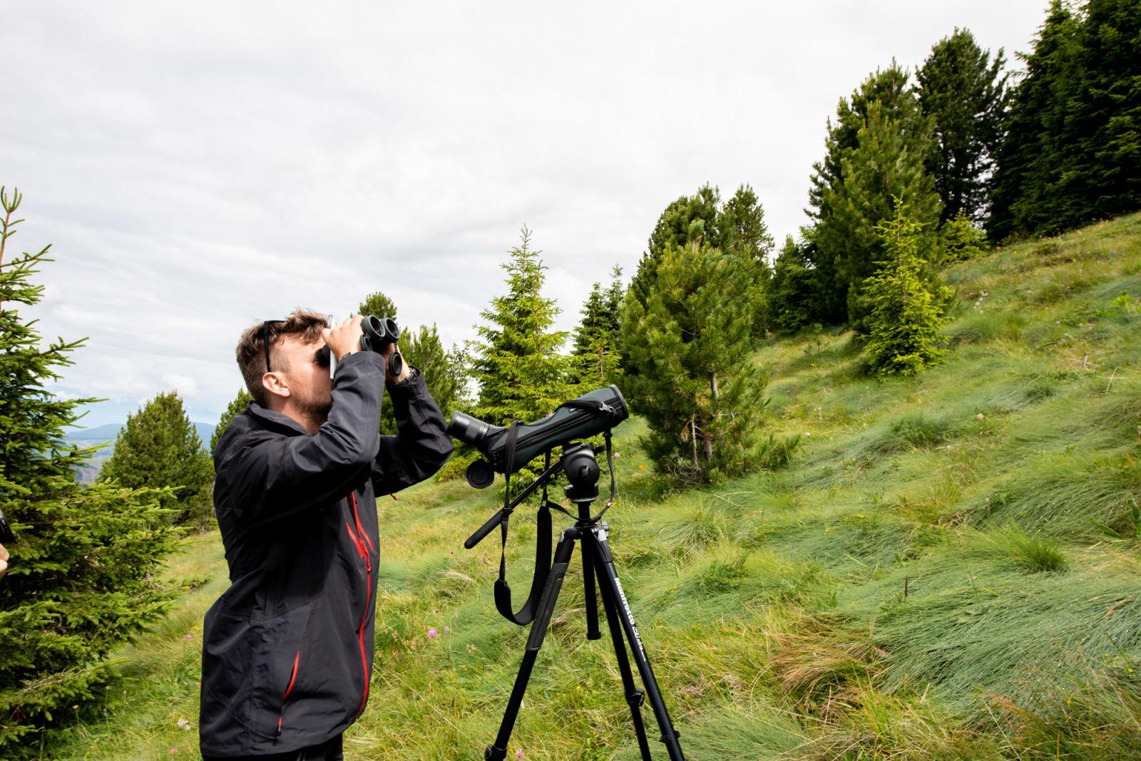 Bird Survey, Manderle (C)Eurac Research Martina Jaider