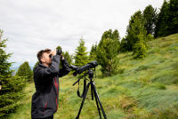 !!! Bird Survey, EURAC
