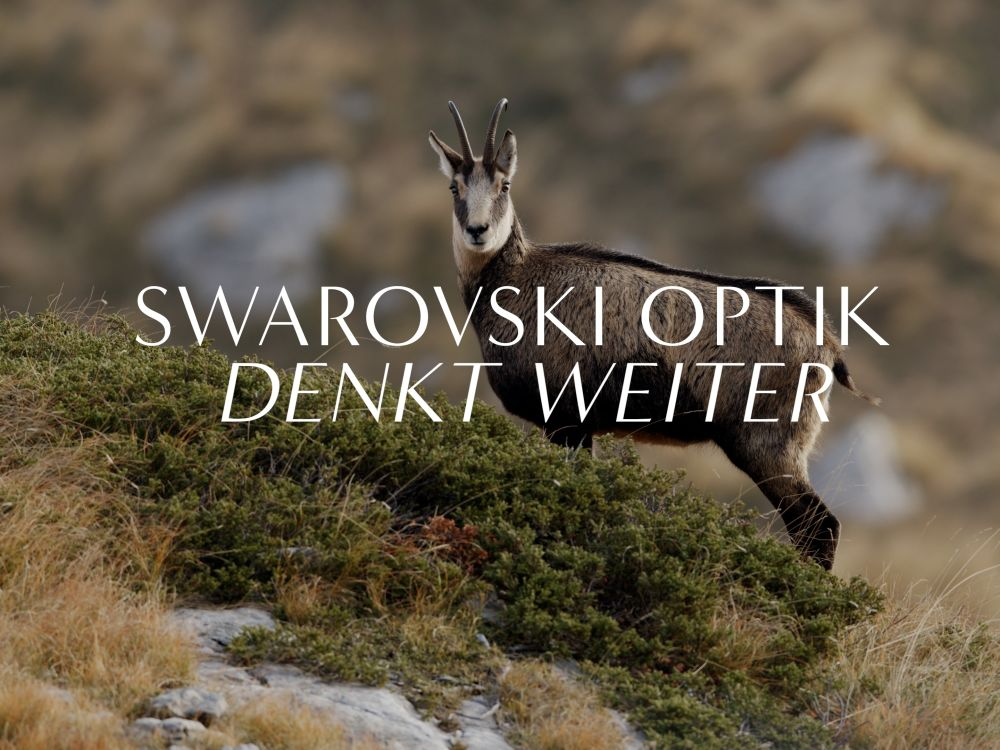 Learn more about how SWAROVSKI OPTIK invented the EL Range, binoculars that precisely measure distance and angle.