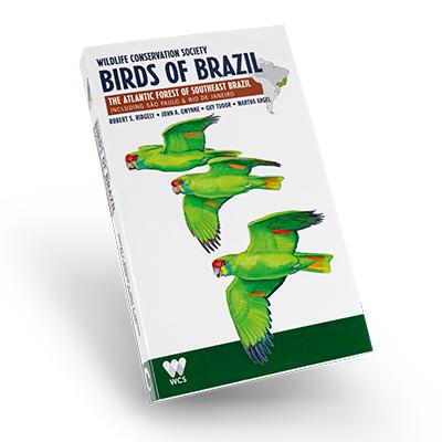 Wildlife Conservation Society, Birds of Brazil: The Atlantic Forest of Southeast Brazil, including São Paulo & Rio de Janeiro  Robert S. Ridgely, John A. Gwynne, Guy Tudor, Michael DiGiorgio  Comstock Publishing Associates, 2016