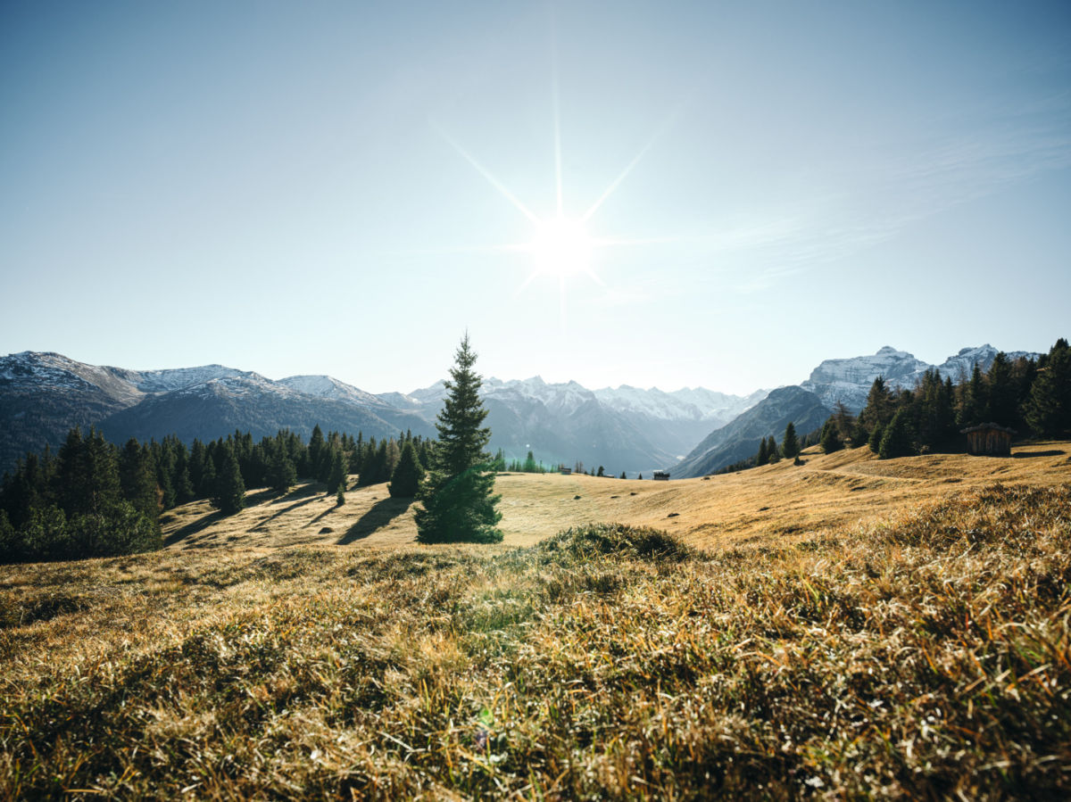 Landscape for #approaching distance - mountains, sun, trees, brown grass - K20 dS B1071377 CMYK ID:1544727