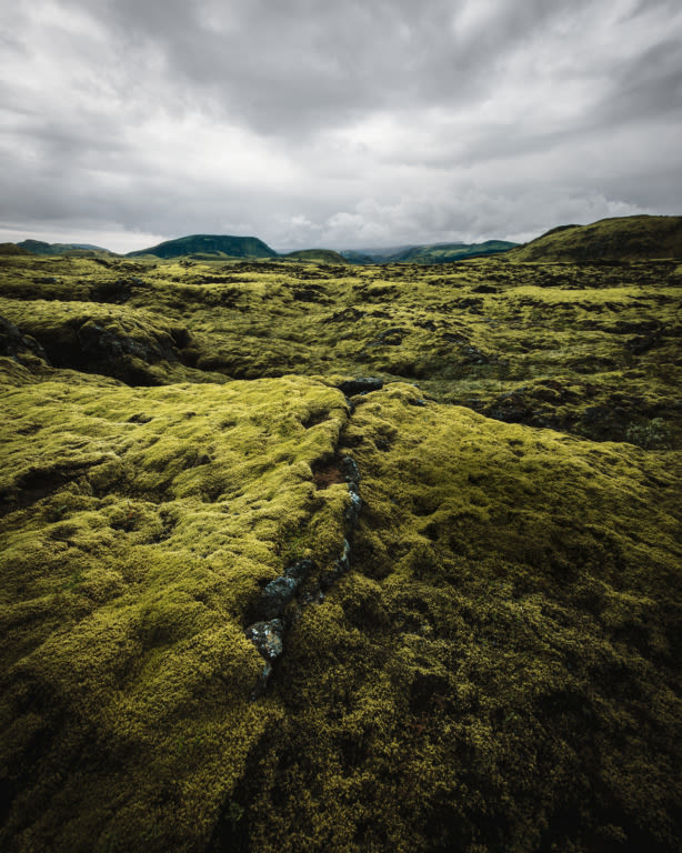 Iceland Hunters landscape