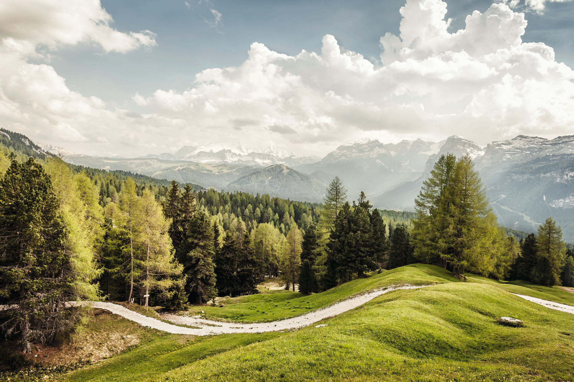 AP­PRE­CIA­TING THE GIFTS OF NA­TU­RE Landscape Alps