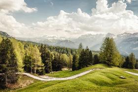 Swarovski Optik NORBERT NIEDERKOFLER APPRECIATING THE GIFTS OF NATURE landscape of green coverd alps