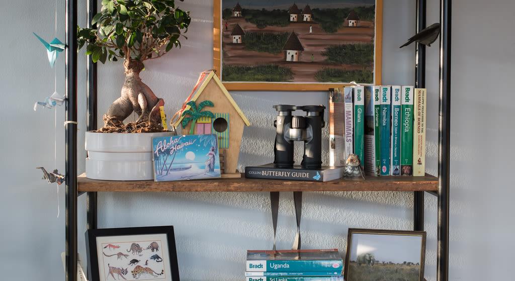 bookshelf with binoculars