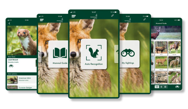 Smart innovations – apps unlock the dG's full potential - SWAROVSKI OPTIK dG Mammals App english