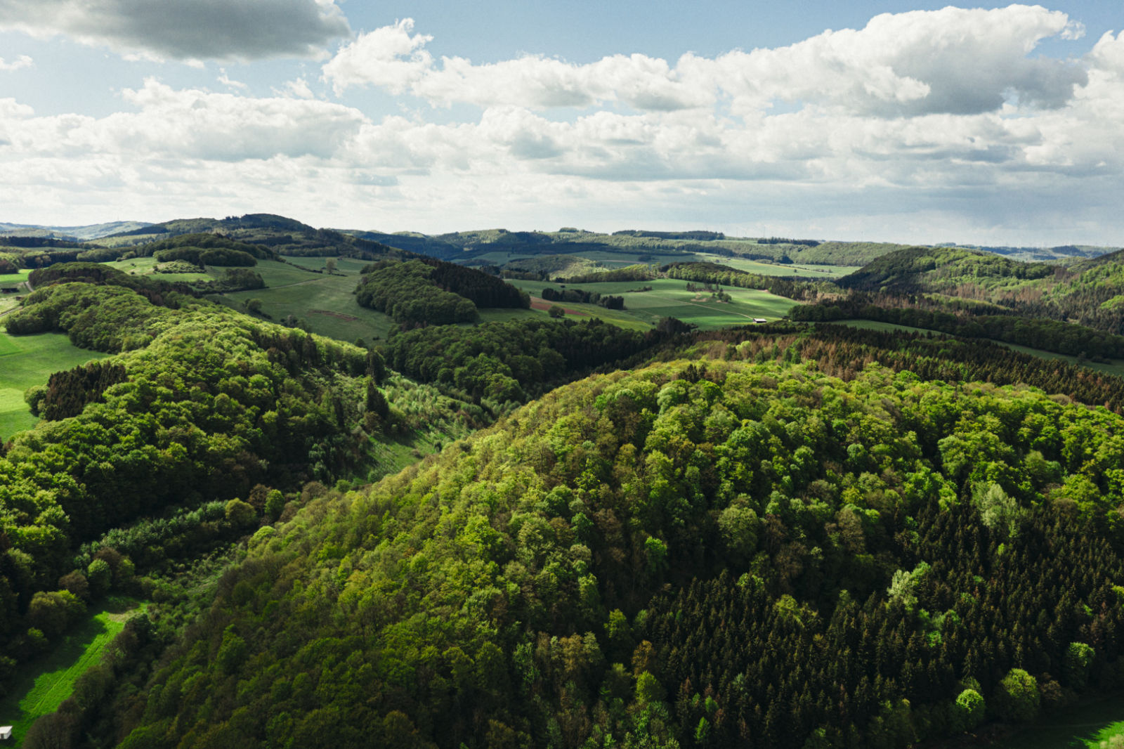 closer2hunting To hunt is to protect - Patrick Hundorf, Hessen, wide landscape