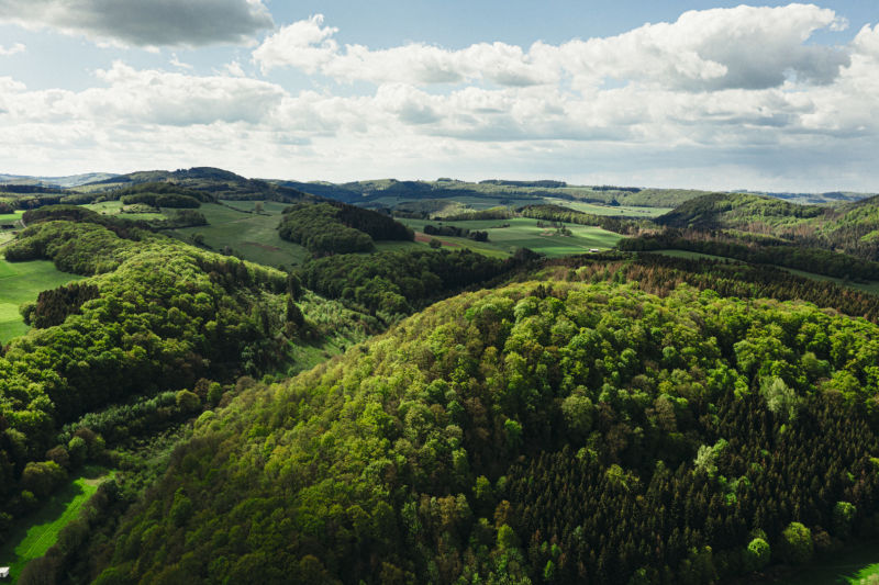 closer2hunting To hunt is to protect - Patrick Hundorf, Hessen - wide landscape ID1313184