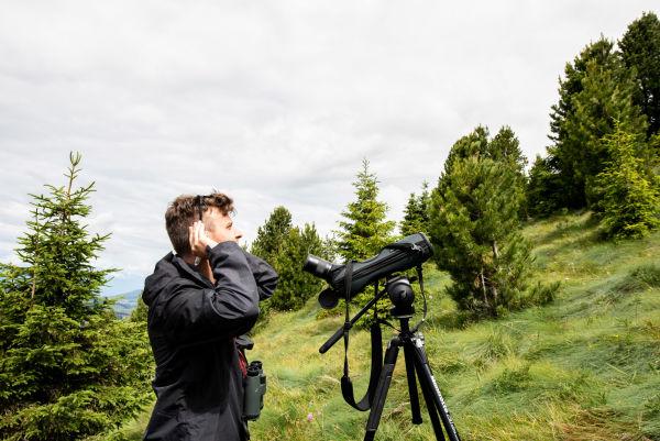 Birds Survey,Manderle, Eurac Research Martina Jaider