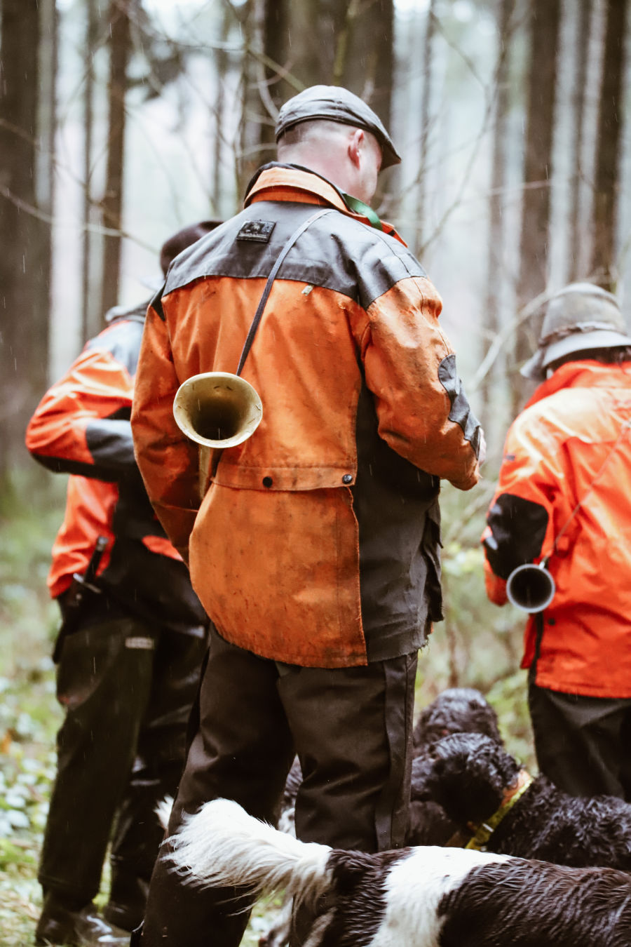 Join  us on a driven hunt in Belgium H/ - Dimitri Hullebroek the beaters arrive in the woods
