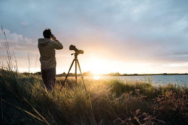 Telescope, man, sunset